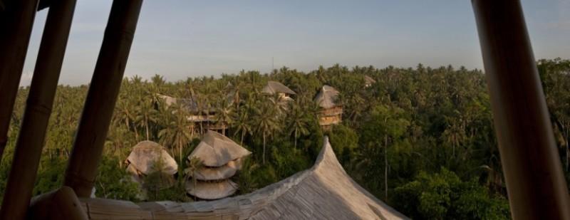 бамбукови къщи 14