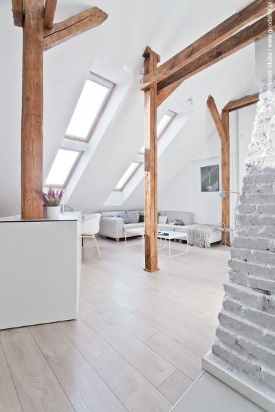стар таван - жилище 2