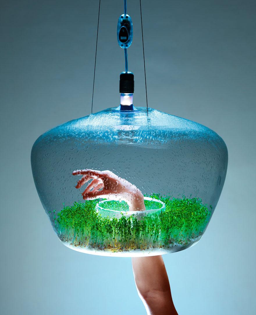 лампа, в която да отглеждаш подправки - 1