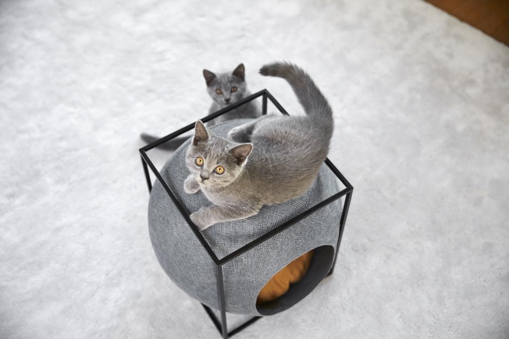 мебели за котки - 11