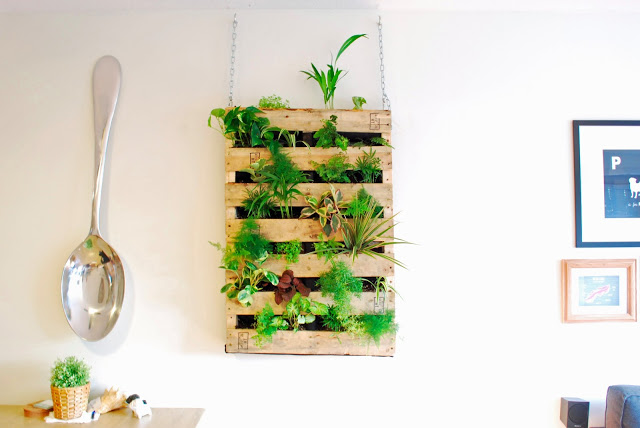 вертикална градина_3