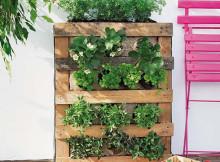 вертикална градина_voila