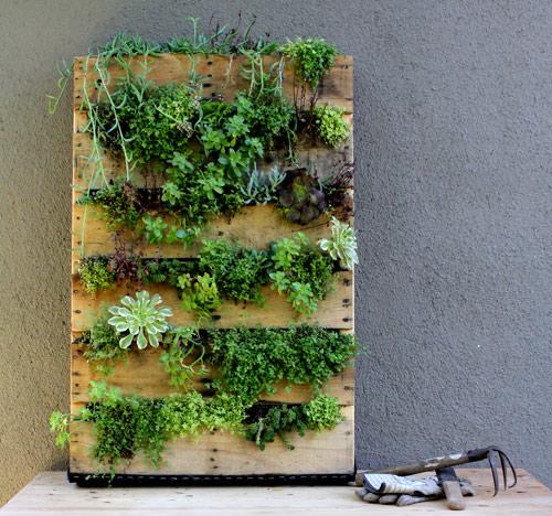 направи си сам вертикална градина от палет