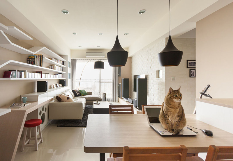 рафтове за котка_5