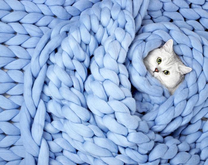 гигантски одеяло